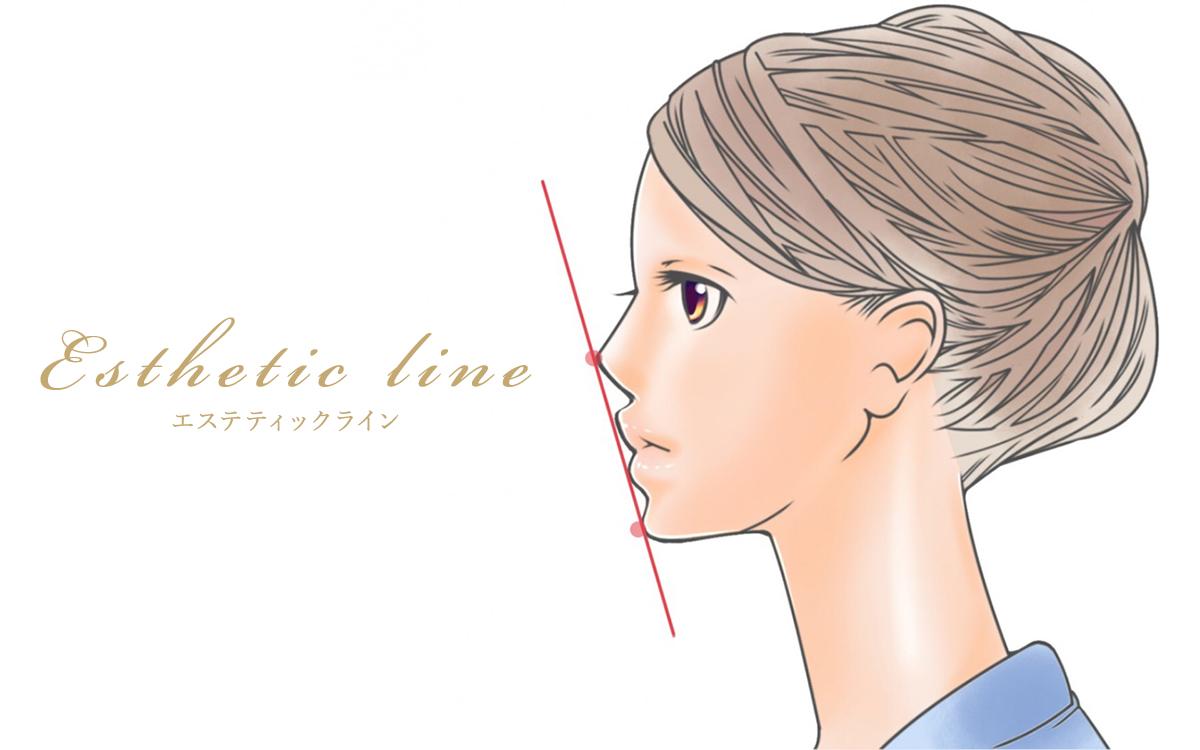 エステティックライン 鼻先と頤の2点を通る直線