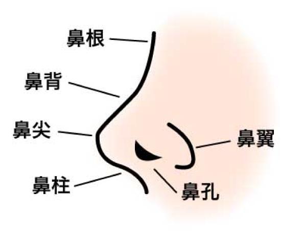 隆鼻術(プロテーゼ)