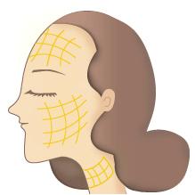 金の糸 プラチナの糸 エイジングケア アンチエイジング リフトアップ 肌のハリ
