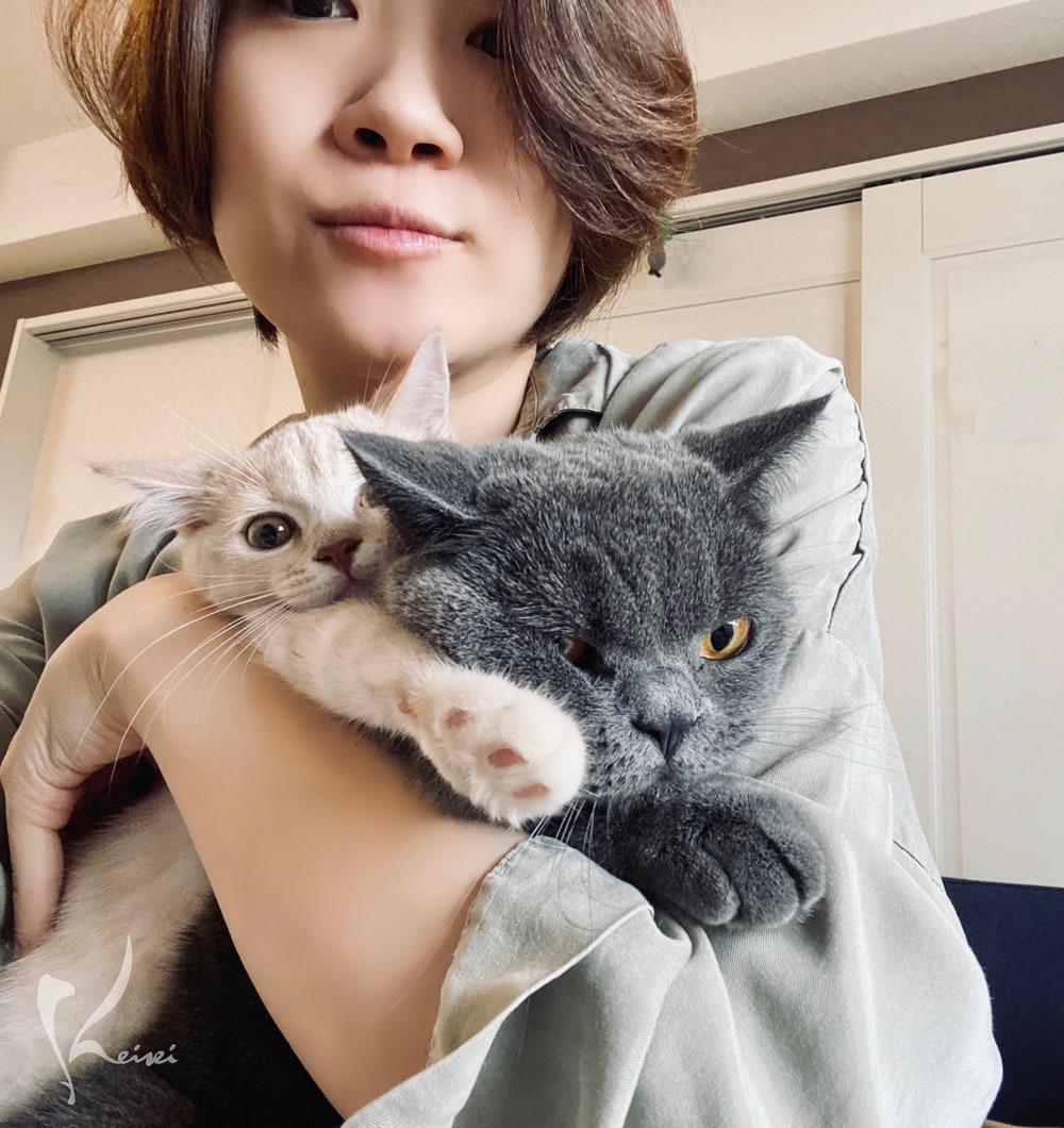松本先生と猫の画像