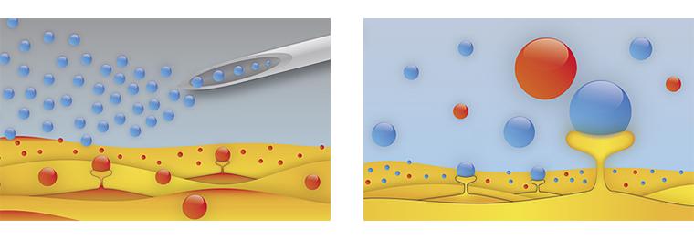 ACRS療法による皮膚細胞の再生と活性化の様子を表すイラスト画像