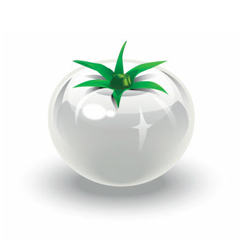ホワイトトマトの画像